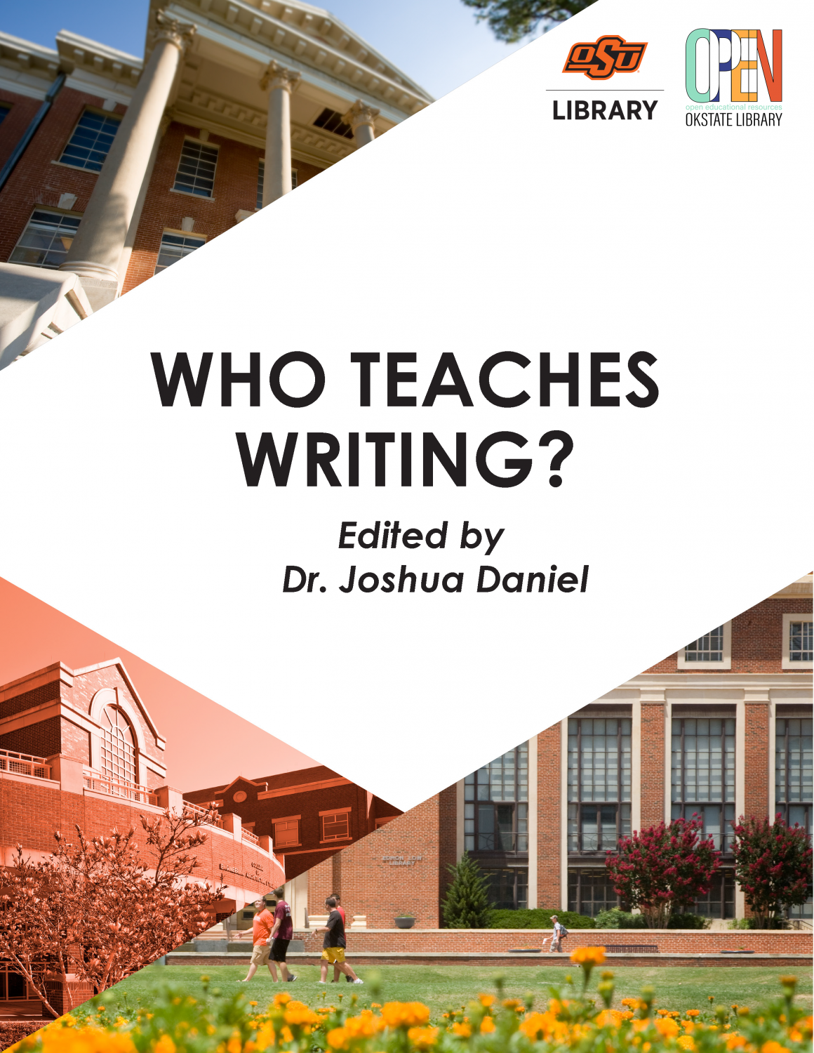 Cover image for Who Teaches Writing?
